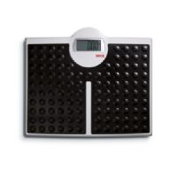 Seca 813 High Capacity Flat Floor Scale